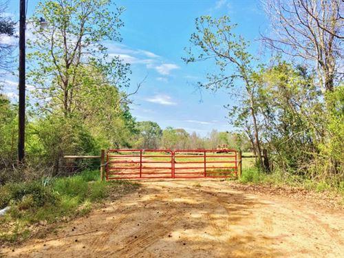 479 Acre Large Land Tract For Sale : Ethel : East Feliciana Parish : Louisiana