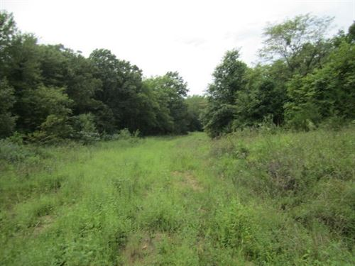 Recreational Deer Hunting Property : Cainsville : Mercer County : Missouri