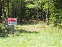 Forest Home Tract Road Frontage : Forest Home : Butler County : Alabama