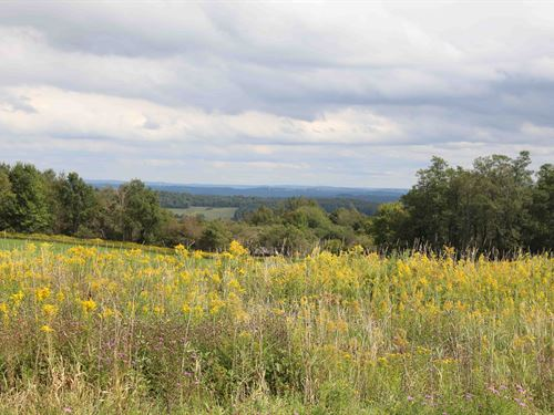 Crops And Farming On Rolling Land : Cazenovia : Madison County : New York