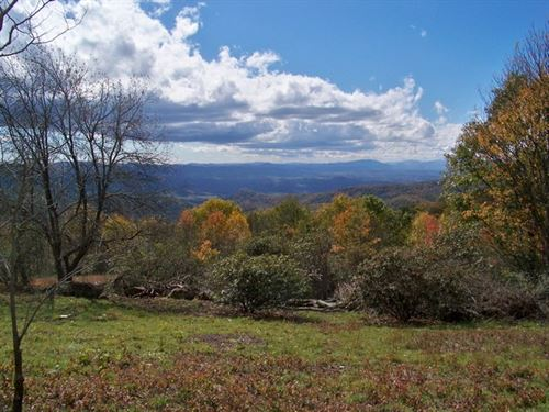 Long Range Views In The Blue Ridge : Independence : Grayson County : Virginia