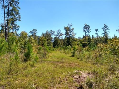 10 Acres, Laurens County, Sc : Clinton : Laurens County : South Carolina