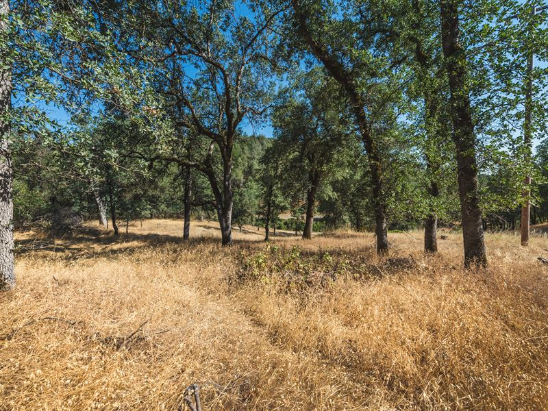 5 09 Acres In Shasta County Ca Farm For Sale By Owner