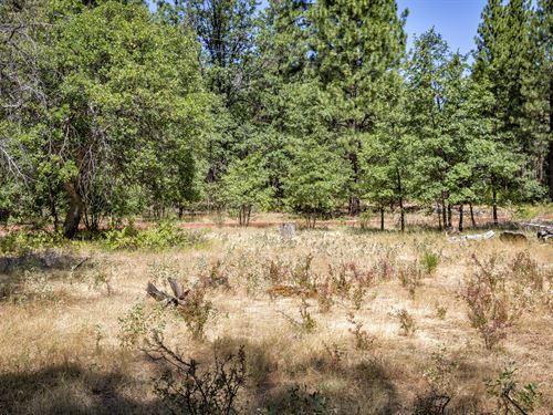 6.71 Acres In Shasta County Ca : McArthur : Shasta County : California
