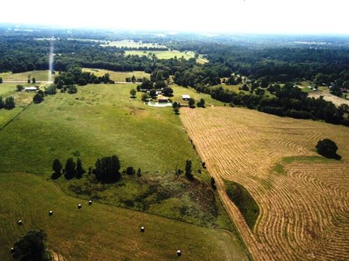 Over 77 East Texas Acres, Creek : Winnsboro : Wood County : Texas