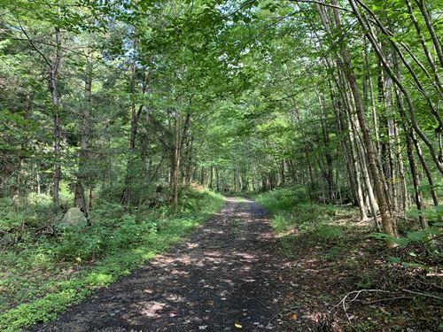 Adirondack Foothills : Remsen : Oneida County : New York