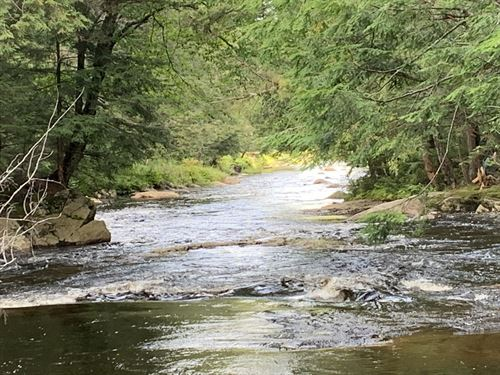 Half Mile Frontage On Muskrat Brook : Remsen : Oneida County : New York