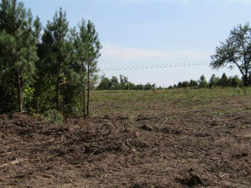 36+ Ac Farm, Diamond In The Rough : Deer Lodge : Morgan County : Tennessee