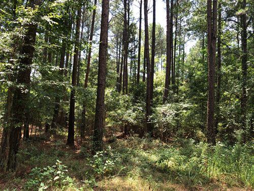 Porter Creek Tract : Watkinsville : Oconee County : Georgia