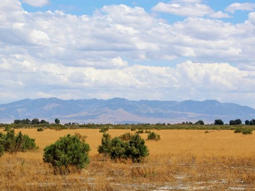 40 Acres Ag Land Ready For Grazing : Delta : Millard County : Utah