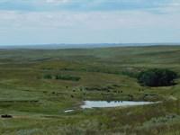 Ridge View Ranch : Prairie City : Perkins County : South Dakota