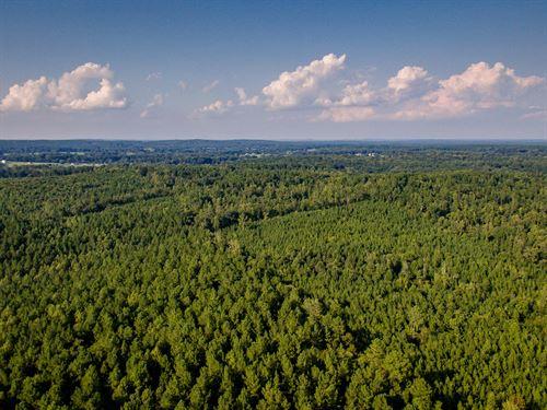 Hunters Paradise Rare Large Acreage : Siler City : Chatham County : North Carolina