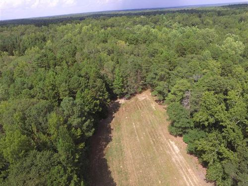 40 Acres in Rock Hill, York Cou : Rock Hill : York County : South Carolina