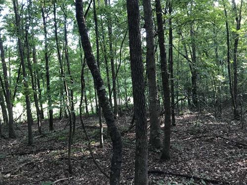 31 Acres in Greer, Greenville : Greer : Greenville County : South Carolina