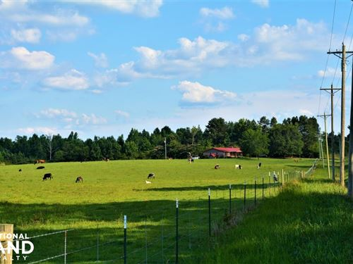 Winfield Cattle Farm And Homestead : Winfield : Marion County : Alabama