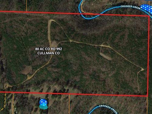 Jones Chapel 80 Acre Tract CO Rd : Jones Chapel : Cullman County : Alabama