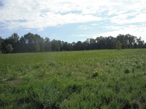 27 Acres, Lancaster County, Sc : Lancaster : South Carolina