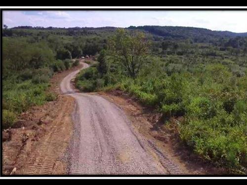 Shurtz Farm Tract 5 : New Plymouth : Vinton County : Ohio