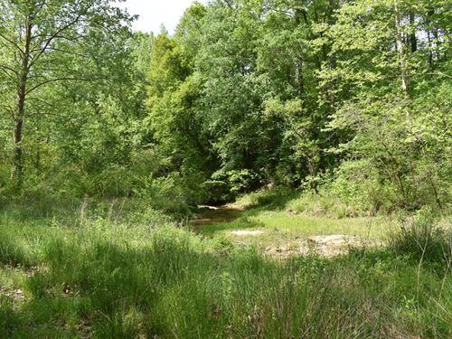Hunting Land : Heflin : Cleburne County : Alabama