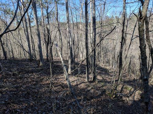 Off The Grid In Paradise : Sycamore : Talladega County : Alabama
