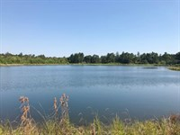 10 Acre Lake On 132 Acres Of Timber : Poplarville : Pearl River County : Mississippi