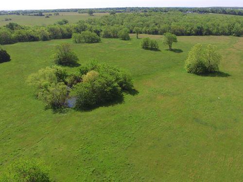 78 Acres Wheatland, Hickory County : Wheatland : Hickory County : Missouri