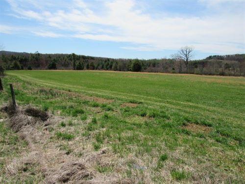 Farm Land For Sale in Floyd VA : Willis : Floyd County : Virginia