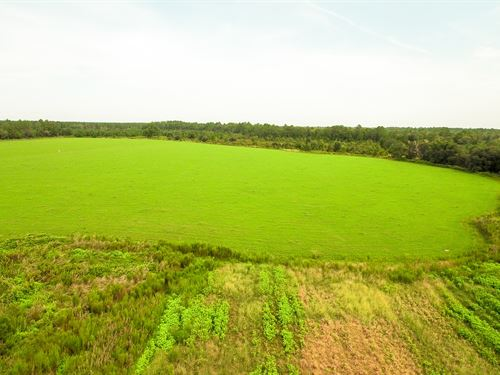 River Front Investment Tract : Patterson : Pierce County : Georgia