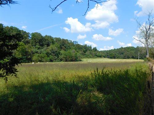Hunting Land For Sale In Mo Ozarks : Vanzant : Douglas County : Missouri