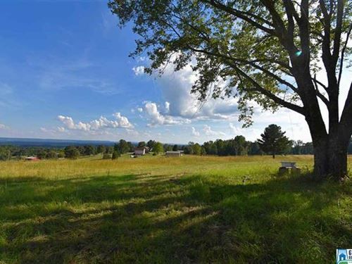 A Farm With A View : Hayden : Blount County : Alabama
