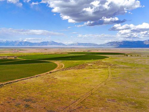 Acreage With Power & Views : Alamosa : Colorado