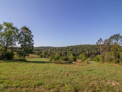 Woodgeard Rd, 11 Acres : McArthur : Vinton County : Ohio