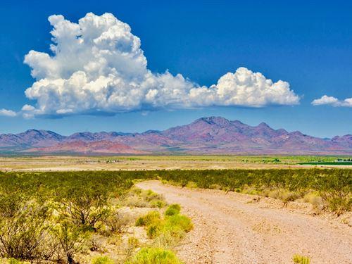 Ranch W Power Bordering Public Land : Animas : Hidalgo County : New Mexico