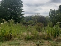 84 Acres Unrestricted With Barn : Mooresburg : Hawkins County : Tennessee