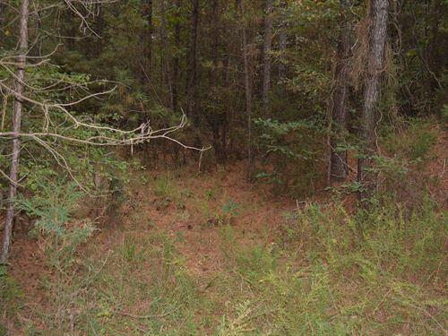 Rare Large 61 Acreage Lot : Pittsboro : Chatham County : North Carolina