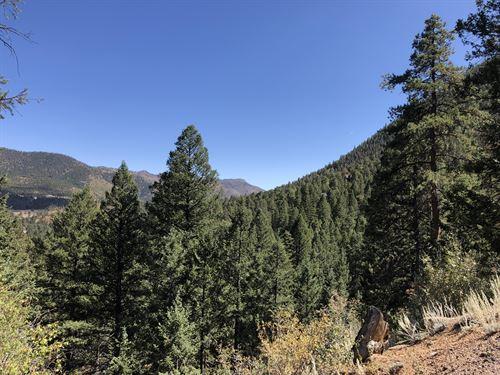 Catamount Creek : Green Mountain Falls : Teller County : Colorado