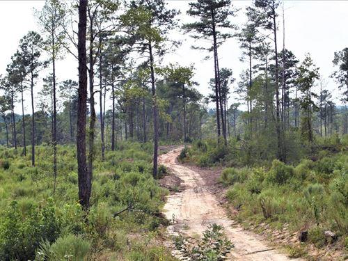 Hunting And Recreational Tract : Gray : Jones County : Georgia