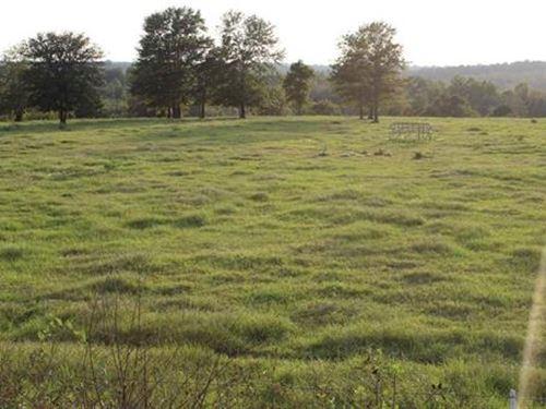 Beautiful Farm In Peach County : Fort Valley : Peach County : Georgia
