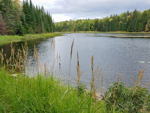 Affordable Off-Grid Cabin Maine : Ludlow : Aroostook County : Maine