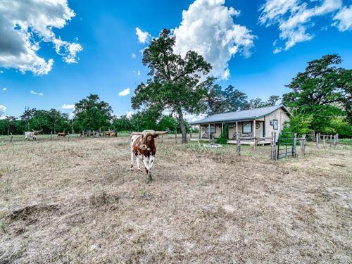 20+/- Acres In Grimes : Iola : Grimes County : Texas