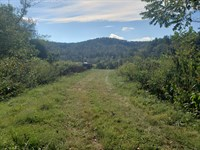 67 Unrestricted Acres, Mtn View : Mooresburg : Hawkins County : Tennessee