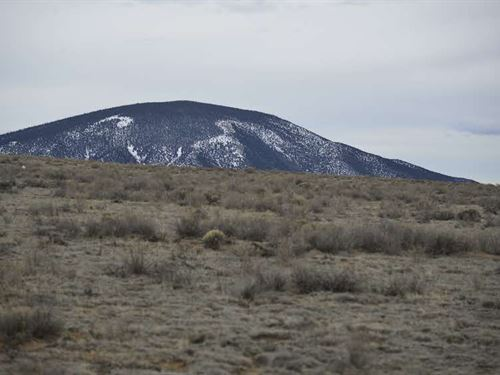 Set Your Fishing Camp Here : Arlinton : Costilla County : Colorado