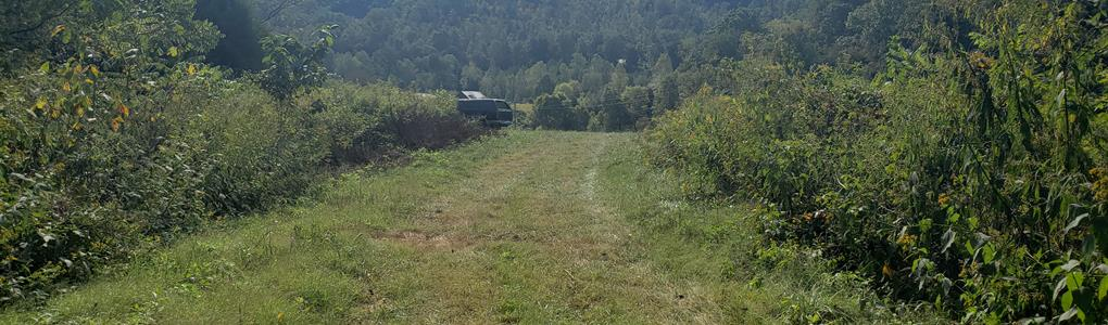 151 Acres Unrestricted Land : Mooresburg : Hawkins County : Tennessee