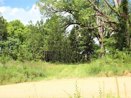 Affordable Acreage in Jones County : Gray : Jones County : Georgia