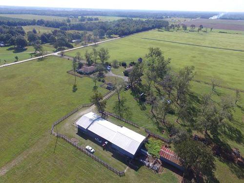 120 Acres in Live Oak, FL : Live Oak : Suwannee County : Florida