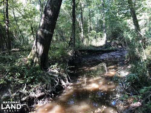 Mill Creek Hunting or Homesite : Union Springs : Bullock County : Alabama