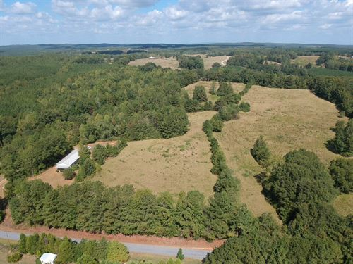 35+/- Acres Pasture/Timber Land : Wadley : Clay County : Alabama