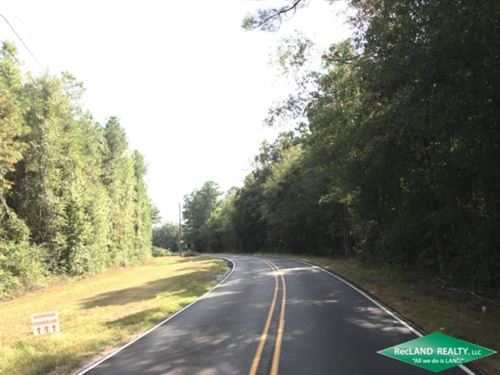 17 Ac, Wooded Tract For Home Site : Swartz : Ouachita Parish : Louisiana