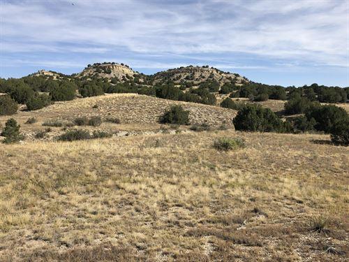Red Creek Ranch Bronquist West : Pueblo : Colorado