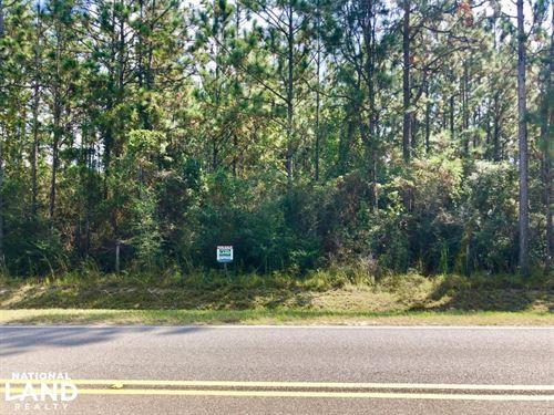 County Rd 65 14 Acre Home Site : Loxley : Baldwin County : Alabama